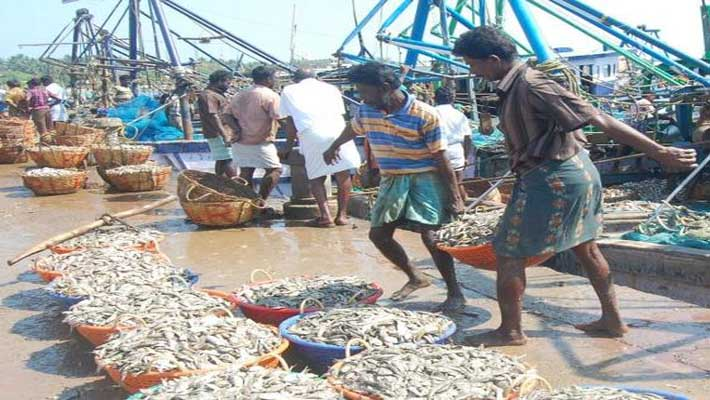 Colombo to speed up release of 114 Indian fishermen