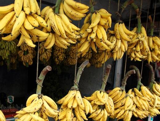 Kerala's Nendran bananas to conquer Europe